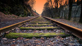 """""""Å være på rett spor uten å gjøre noe, betyr at du vil bli truffet av toget."""" Igor Sikorsky"""